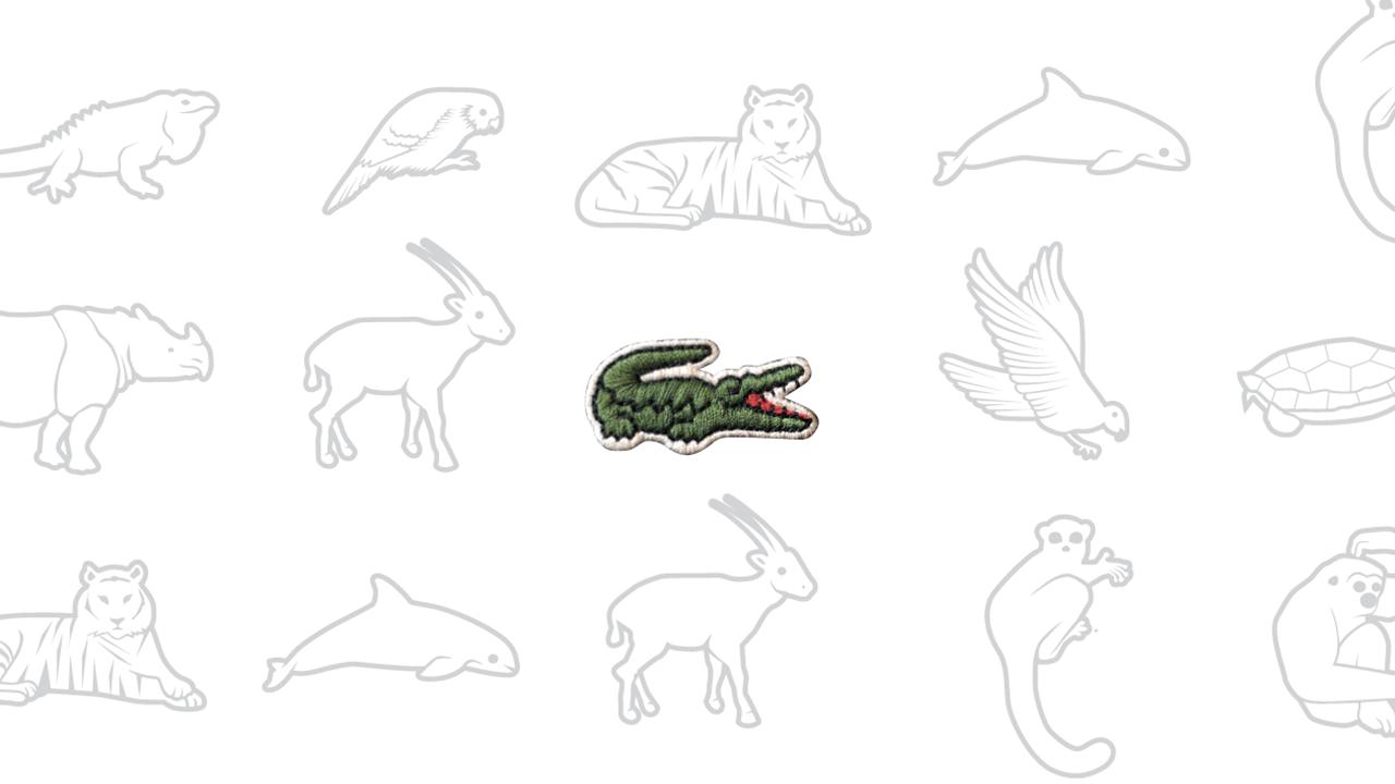 Lacoste substitui crocodilo da marca por animais em extinção -  Publicitários Criativos 23d7d6f834